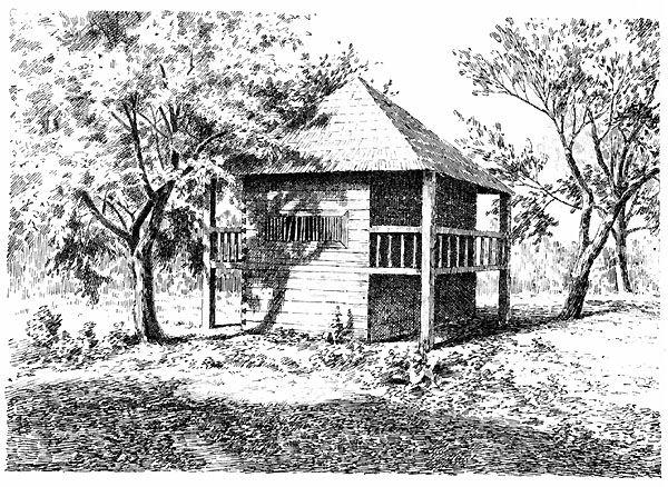 ŚWIRON W RUDUPIACH - ALSO: LAMUS - STOREHOUSE