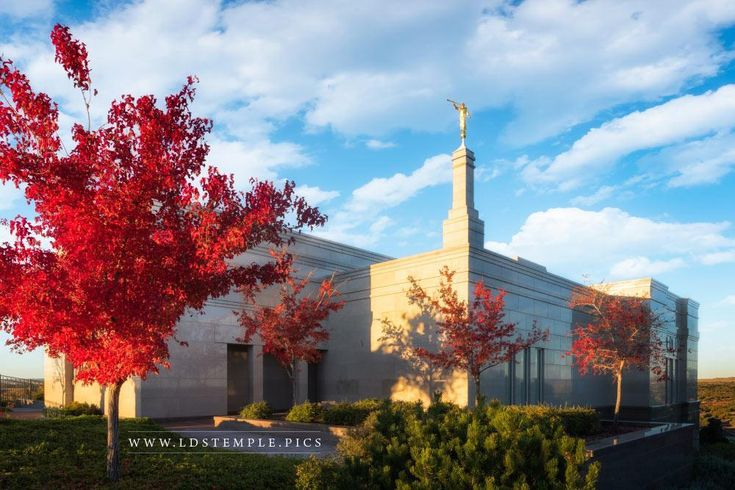 Snowflake Arizona Temple Autumn | LDS Temple Photos