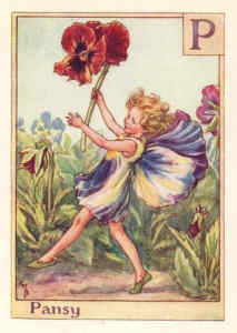 P is for the Pansy Fairy