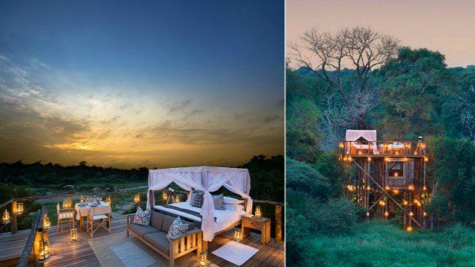 Tinyeleti Treehouse, Lion Sands - SOUTH AFRICA. http://www.go2africa.com/top-safari-brands/7258/accommodation