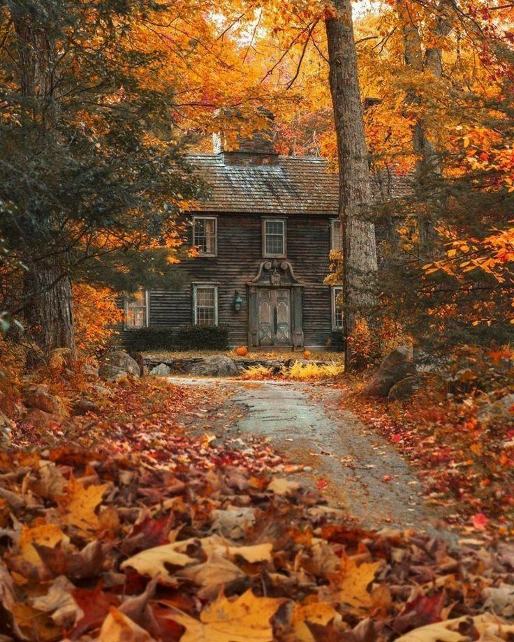Epingle Par Les Photos De Greg Greg M Sur Automne Autumn En 2020 Paysage Automne Scenes D Automne Paysage