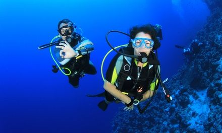 No limits scuba - scuba certification groupon - Dive scuba course for beginners who may want to take a more in-depth certification course later