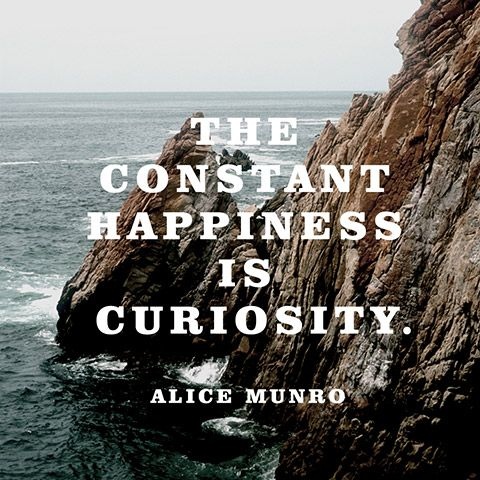 The constant happiness is curiosity. — Alice Munro