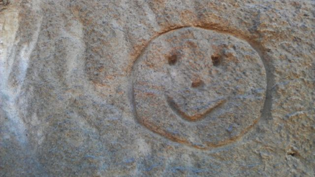 It is never a good idea to deface nature, but if you're going to, make sure it is something cute like this. You can see this smiley face on the Te Henga Walkway at Bethells Beach.