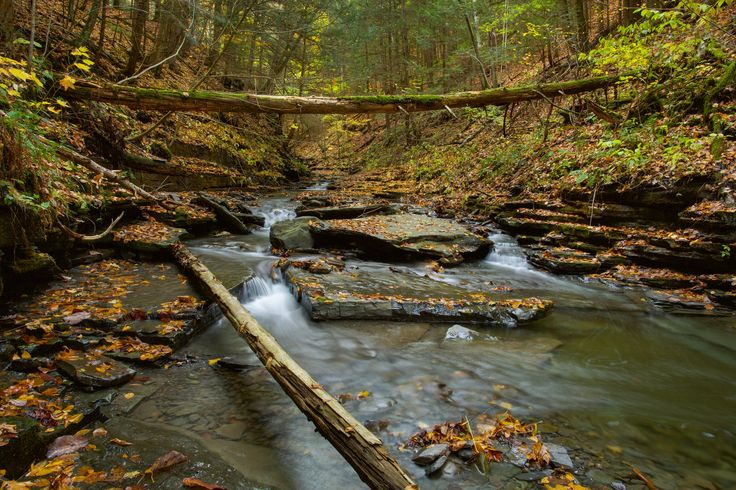 A rocky creek in Ithaca NY(OC)[2048 x 1365]   landscape Nature Photos