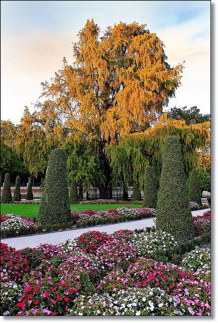El Parque del Retiro es uno de los parques más grandes de Madrid. Perteneció a la monarquía hasta el final del siglo XIX. Ahora es un parque público.