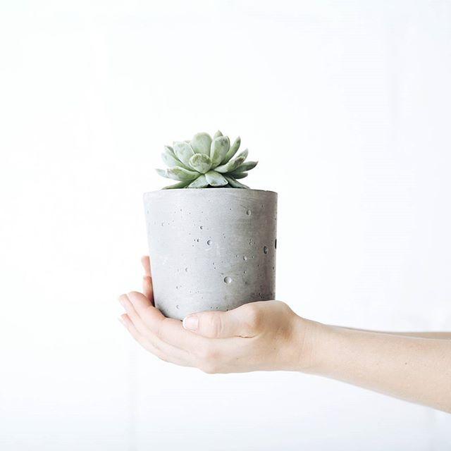We also make a larger cement pot