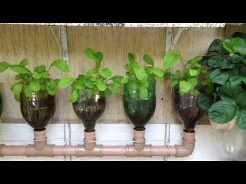 Como fazer uma Horta com Garrafas Pet, Irrigação Automática - YouTube