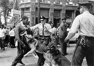 Bill Hudson's image of Parker High School student Walter Gadsden being attacked by dogs was published in The New York Times on May 4, 1963.