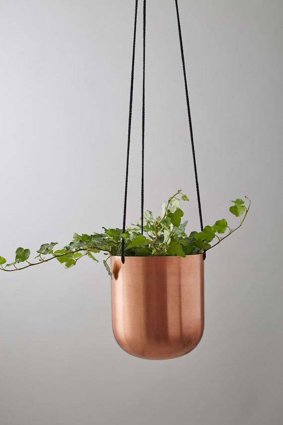 A fun way to bring the outdoors in, this sleek copper planter features a triple-strand thread for hanging. Perfect to brighten up your home with some