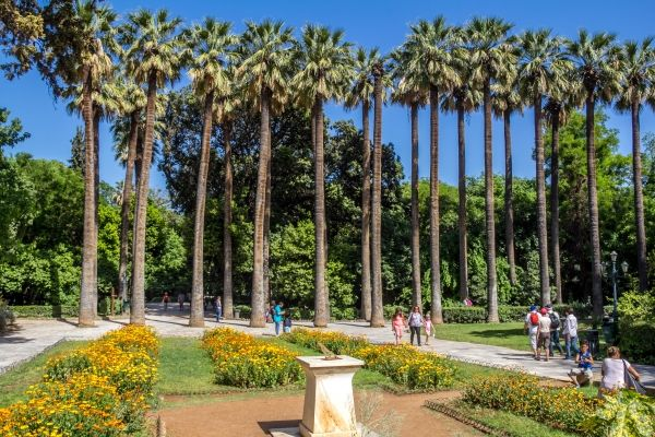 The National Gardens in the centre of Athens