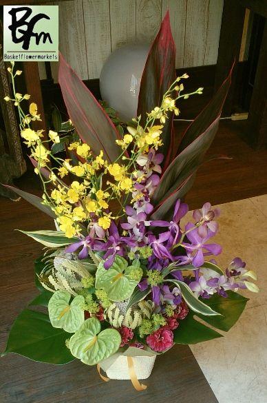 花ギフトのプレゼント【BFM】 南国風のフラワーアレンジメント 紫のランが美しいですね。 http://www.basketflowermarkets.com