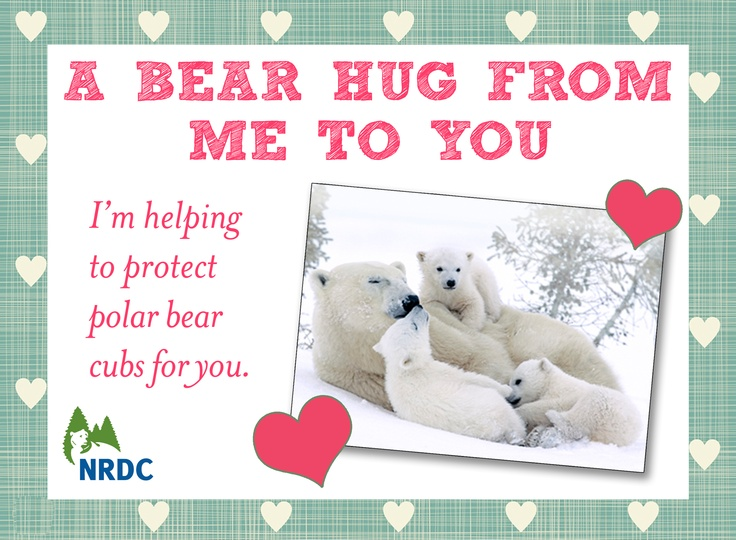 Give That Special Someone A Great Big Bear Hug