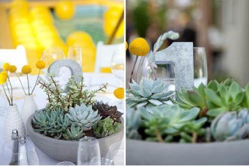 centrotavola matrimonio piante succulente - Cerca con Google