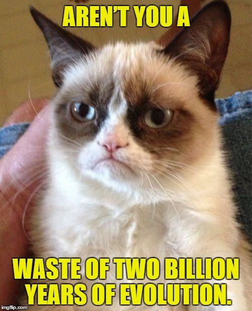 1f0e046e300569ef5ca27419f787d68c grumpy cat meme generator funny grumpy cats 122 best funny memes images on pinterest ha ha, funny memes and