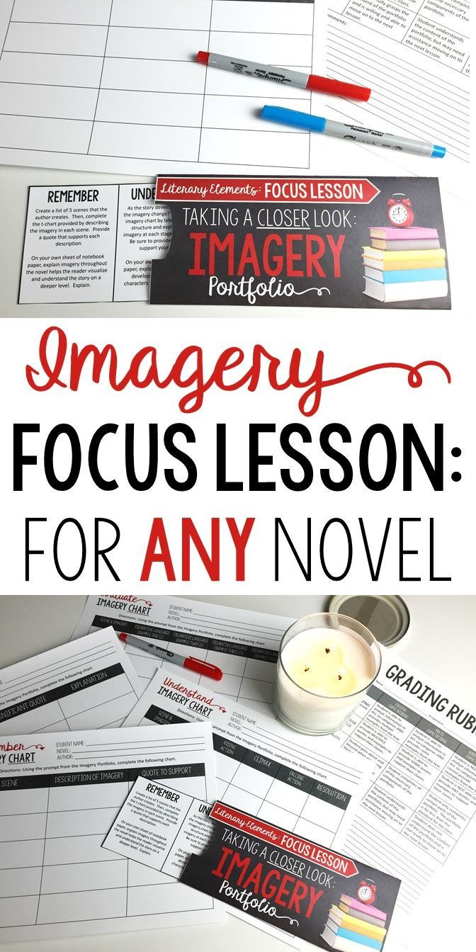 Focus Lesson | Imagery | Perfect for any novel or short story | Grades 6-12