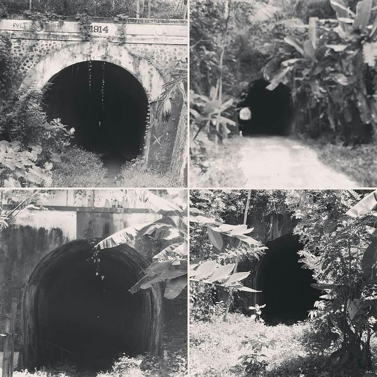 @Regrann from @sejarahbandung -  Searah jarum jam: Terowongan Batulawang (281 m) Hendrik (105 m) Juliana (147 m) Wilhelmina (1116 m). Seandainya jalur kereta api Banjar Pangandaran aktif kita akan berjumpa dengan 4 terowongan cantik ini.  #keretaapi #Railroad #train #Pangandaran #explorejabar - #regrann  #bandungnostalgia
