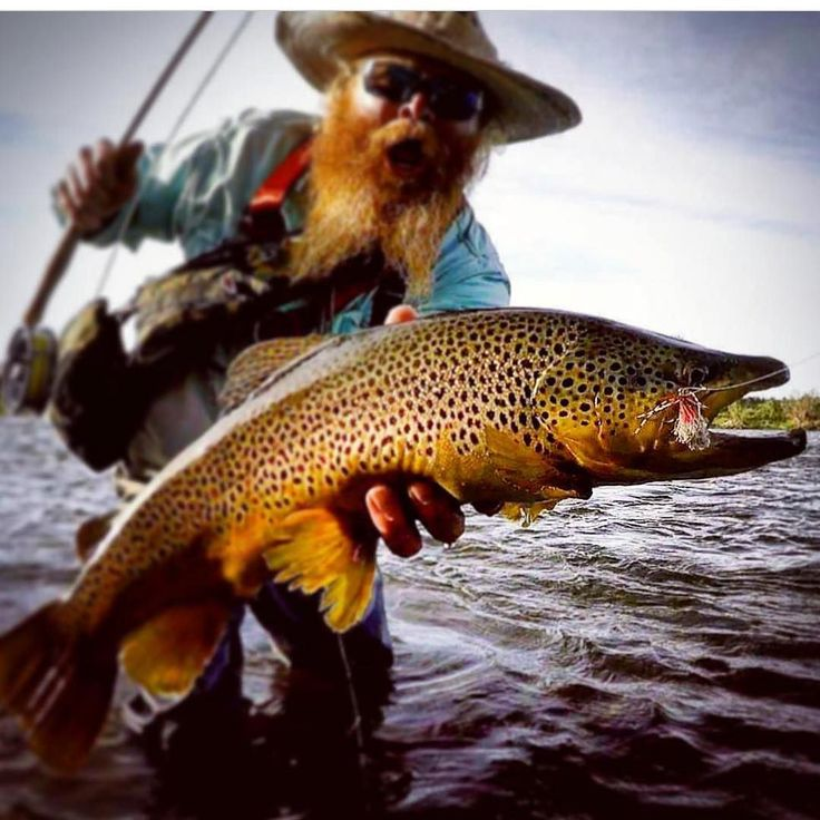 432 best images about fly fishing on pinterest rivers for Best fly fishing nets