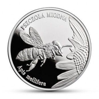 20 zł Pszczoła miodna, Zwierzęta świata