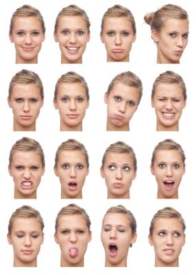 Just a picture of facial expressions. Something I personally want to work on in my drawings, because the expression on a character's face tells so much about their personality.