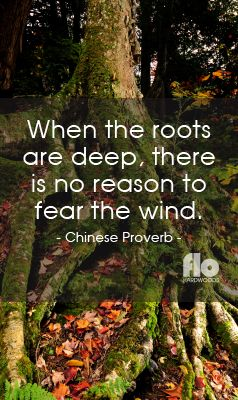 When the roots are deep, there is no reason to fear the wind. ~Chinese Proverb #FLOhardwoods
