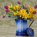 10 успели българки с имена на цветя   10-те най   светът е шарен