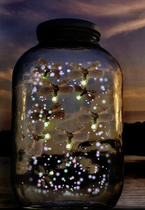 Fireflies!  We would always catch fireflies in a mason jar.  I loved the way they would light up.  Lael misses seeing the fireflies and I always think of her at the first sighting of a firefly!