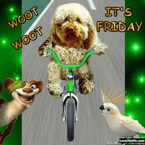 Woot Woot Its Friday  happy Friday!!