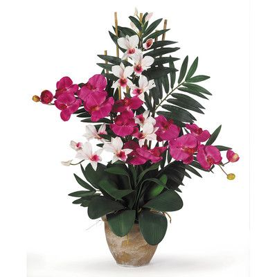 Nearly Natural Double Phalaenopsis and Dendrobium Silk Orchid with Vase