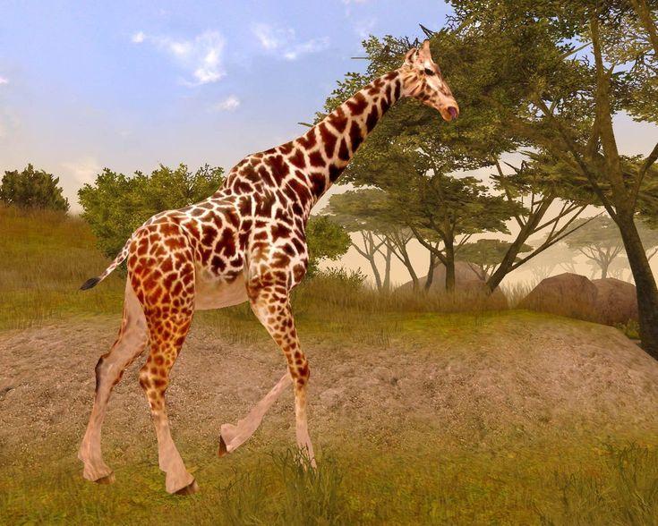 images of african safari | Cabela's African Safari (Pantallazo de Xbox 360) a tamaño completo ... http://httpexploretraveler.com http://httpexploretraveler.net