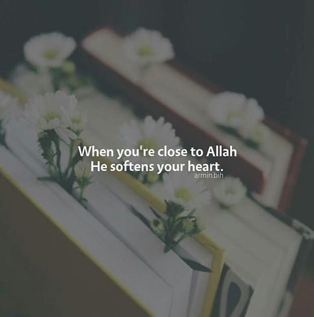 Remain close to Allah for soft ❤️s.   #Faith #Spirituality #Islam