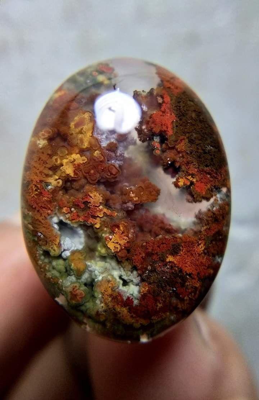 Pin oleh IDN GEMS di indonesian moss agate