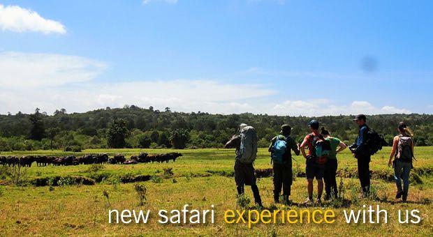 El Mundo Safaris' 8 day trip trekking the Rwenzori mountains is an exciting…