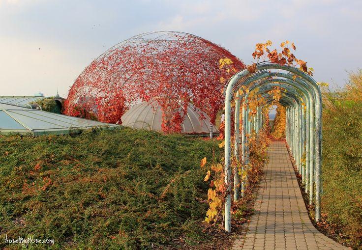 Warsaw University Garden #fall #autumn #colors #industrial