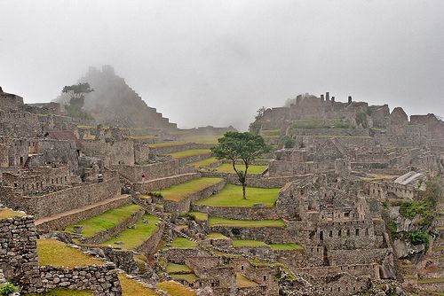 Mist at Machu Picchu, Peru.   Flickr - Photo Sharing!
