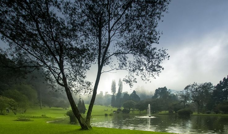 Kebun Raya Cibodas - cianjur, Kebun Raya Cibodas, Wisata Cianjur