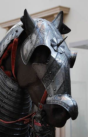 Horse armor.  This site contains a shedload of information about most medieval weapons and their variants that are imaginable.  Excellent site and well worth a read.
