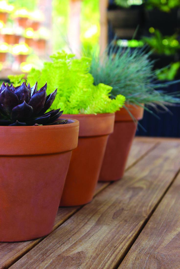 25 x 22cm Red Clay Terracotta Pot #classicshape #claypot #gardeningbasic