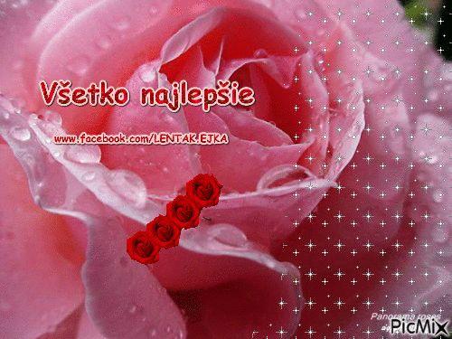 Blahoželanie - ruža