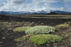 Runt västra och norra sidan av Hekla är landskapet mycket platt. Som ett öde månlandskap av aska och lava. Man passerar där på väg F225 mot Landmannalaugar.
