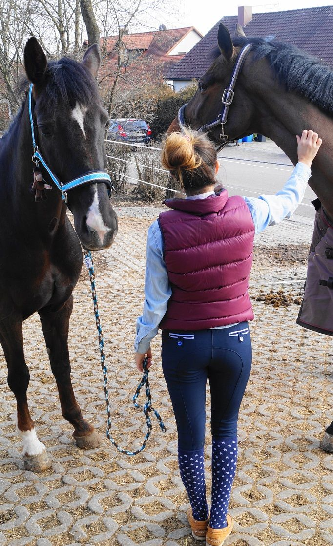 MEIN LIEBLINGSLOOK MIT ANNA SCARPATI, ANIMO UND EQUILINE – Rider Fashion by Dylaras