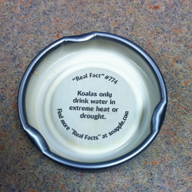 31 best images about snapple facts on pinterest