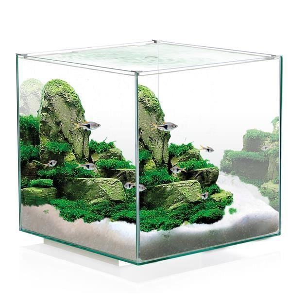 aquarium design | Aquarium design tout équipé 14 litres - Achat / Vente aquarium ...