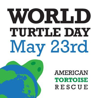 World Turtle Day - May 23rd!