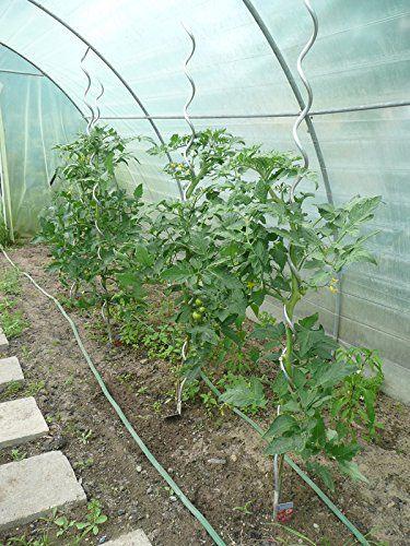 UV2 Treibhausfolie Gewächshausfolie Gartenfolie in 6m Breite für Tomatenhaus Gewächshaus (Meterware): Amazon.de: Garten