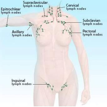 I definitely don't want to discourage someone from FasciaBlasting these areas of the body due to the lymph nodes. But in these areas, you want to stay more surface level and go briskly and a little lighter. In this video I show the level of depth: www.youtube.com/watch?v=Ro5PLVOLpsM, but FasciaBlasters sometimes go way deeper. You should start lightly as shown in this video and only once youve been consistently blasting for 2-3 months should you increase the intensity and duration of e...