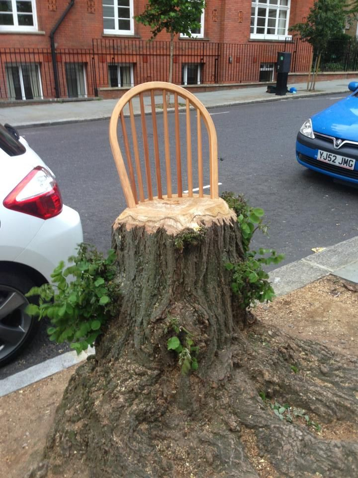 61 best images about tree stump ideas on pinterest house for Tree trunk slice ideas