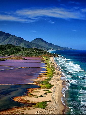 [Margarita Island, Venezuela]