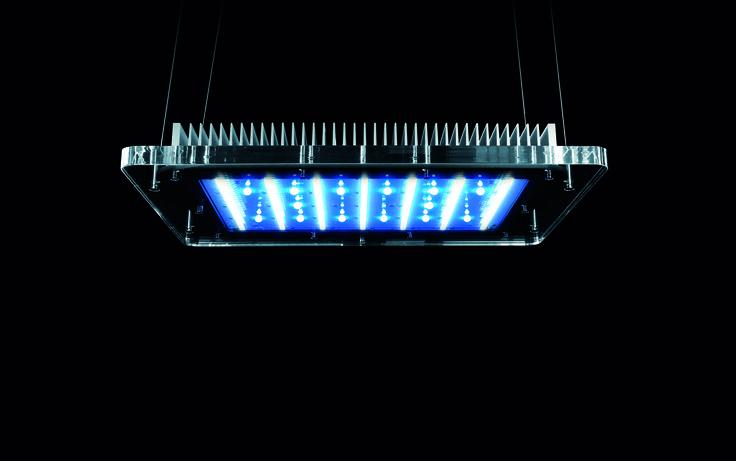SERIE AM: La migliore illuminazione a LED per il tuo acquario