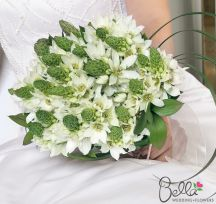 Star of bethlehem flowers make crisp, fresh wedding arrangements that are mostly white but with plenty of green accents. Also known as Ornithogalum, Star of Bethlehem have fresh green, conical spikes which hold many smaller, star-shaped white blooms that open to reveal dark ivory centers. Our Bride & Groom Collection includes: 1 bridal bouquet, 1 groom's boutonniere. $175
